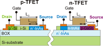 Schematic of p- and n-TFETs